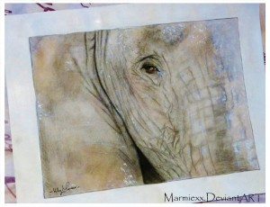 Elephant. A gift I painted for my Uncle.